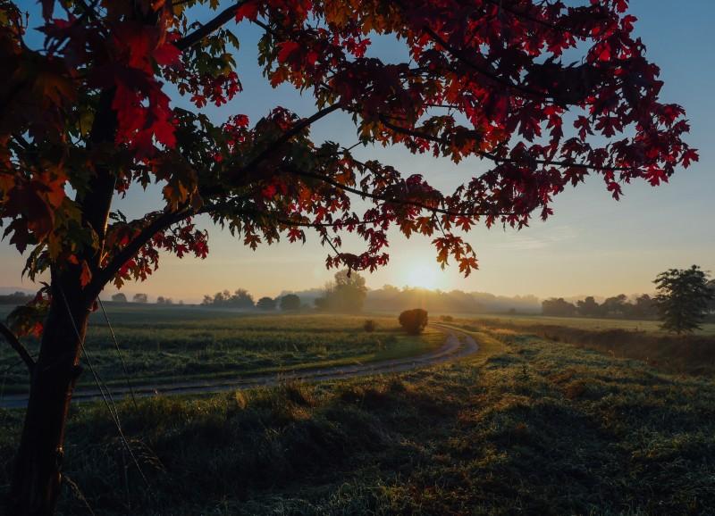 Glücklich durch den Herbst